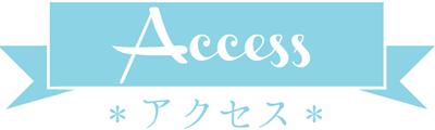 hos-access